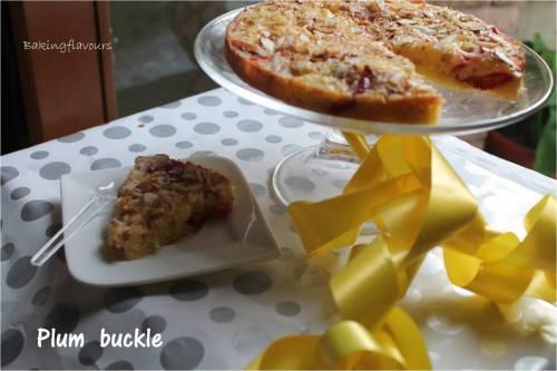 plum buckle