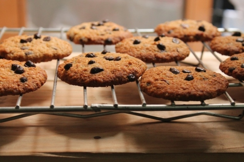 Eggless oats and Cranberry Cookies
