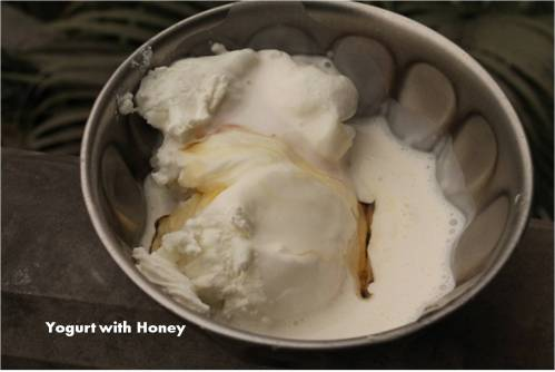 Yogurt with honey