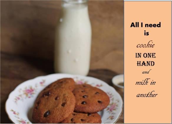 chocolate chip cookiess