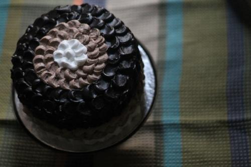 petal ombre cake